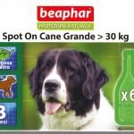 beaphar_cane
