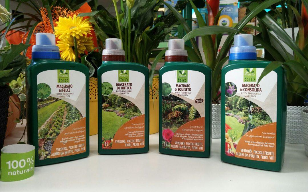 I migliori macerati vegetali per proteggere le piante in primavera