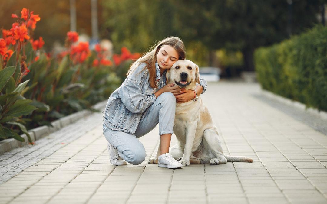 Seresto: il collare che protegge i tuoi animali da pulci e zecche
