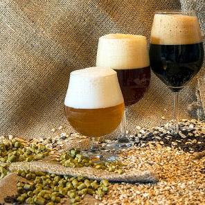 Malti per Birra e Accessori